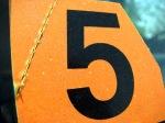 Number 5 for blog